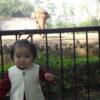 パンダと中国! 広州動物園の巻(メルマガ第245話)